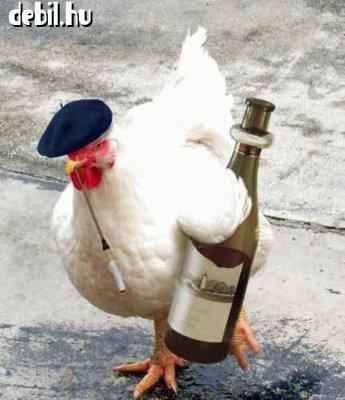 Részeg csirke