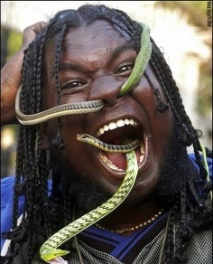 kígyónyelő