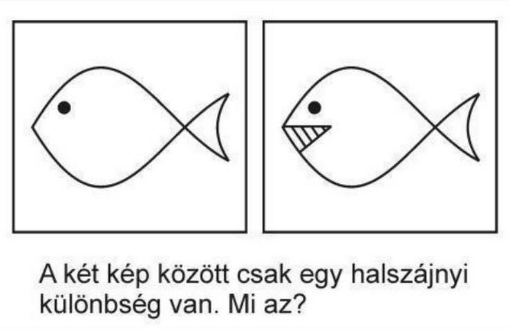 Halszájnyi