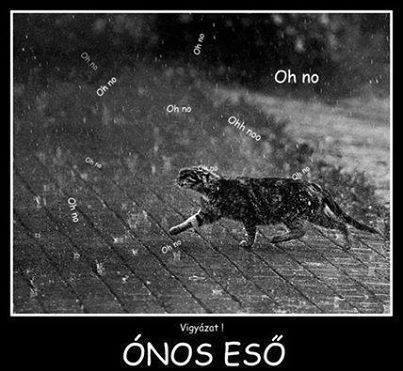 Esik...